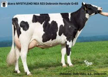 NEA 923 MYSTYLE-* Extrémní zlepšovatel obsahu mléčného tuku a bílkovinbr * na jalovice