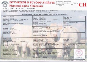 ZIT 826 DEVRED(111 572 826)