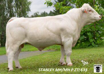 ZTI 633 STANLEY(211 582 633)